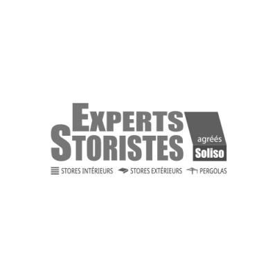 Experts storistes